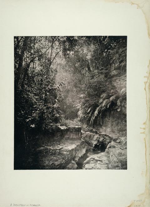 典藏圖片 - 穿越甲仙與荖濃間的小徑